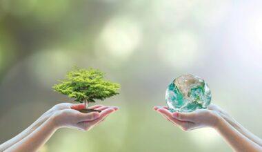 Çevre koruma yatırım harcamaları azaldı